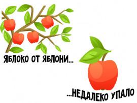 """(31958) Футболки для семейной фотосессии """"Яблоко от яблони"""""""